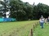 Hestevæddeløb 2011