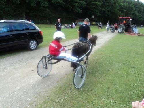2011 Hestevæddeløb 20