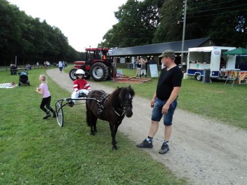 2011 Hestevæddeløb 21