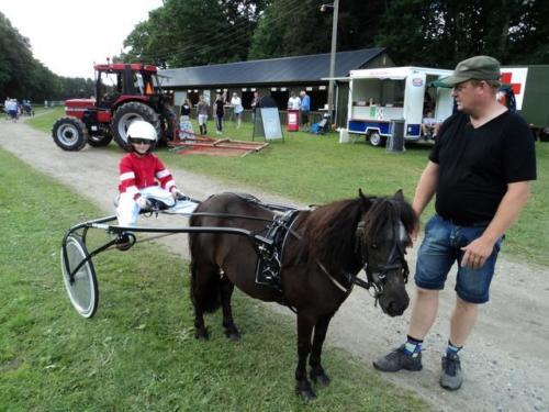 2011 Hestevæddeløb 22