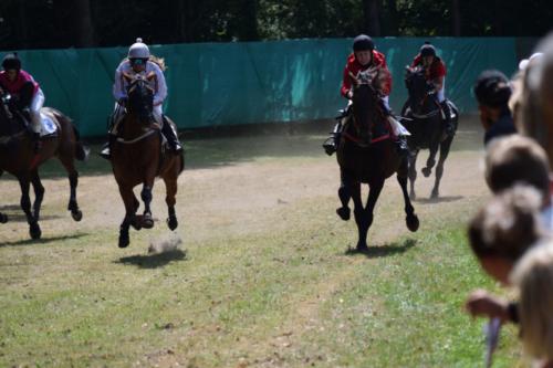 Asaa Hestevæddeløb 2018 00010