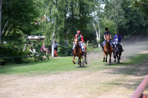 Asaa Hestevæddeløb 2018 00024