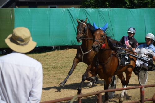 Asaa Hestevæddeløb 2018 00100